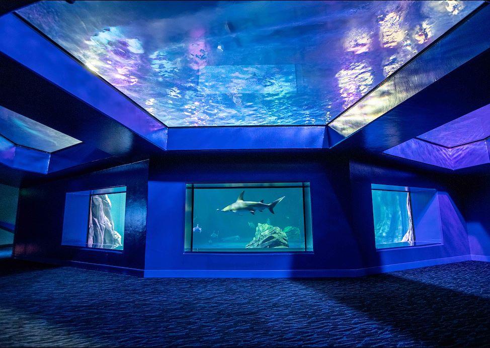 best-attractions-hotel-in-atlanta2